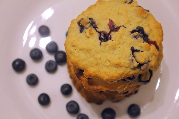 Gluten Free Banana & Blueberry Cookies. Photo by Danielle Bussell