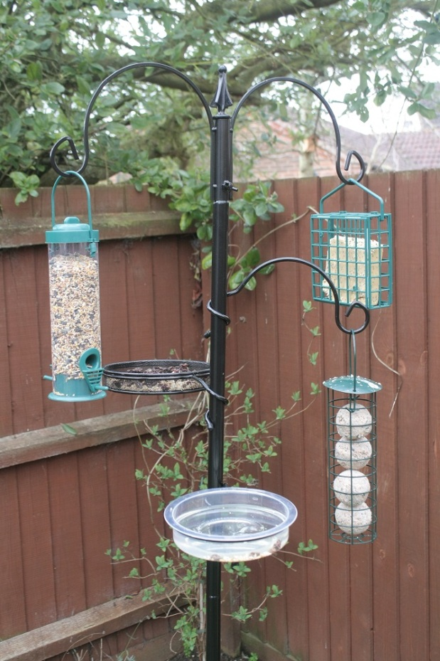 Full to the brim bird feeder. Photos by Danielle Bussell.